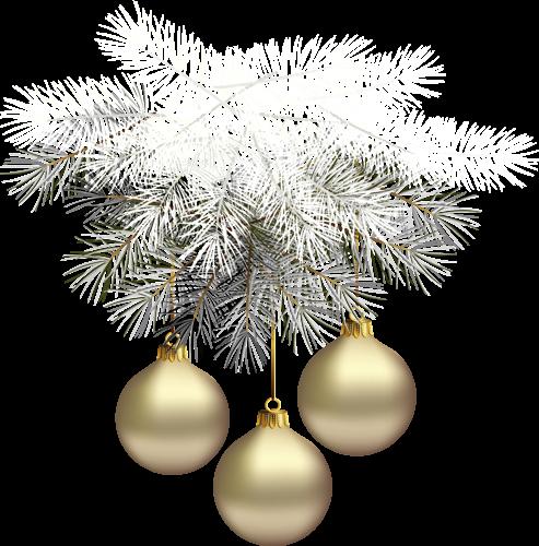 C'est la plus belle nuit de l'année pour les Anges de Noël!