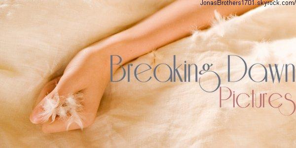 La toute première image de Breaking Dawn est apparue, et franchement, elle est trop belle. C'est la main de Bella, au lendemain de leur lune de miel. Enfin, je crois que nous l'avions tous deviné.