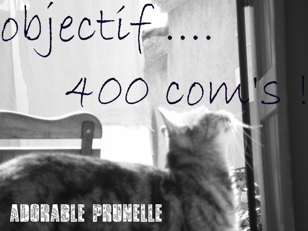 Objectif : 400 com's