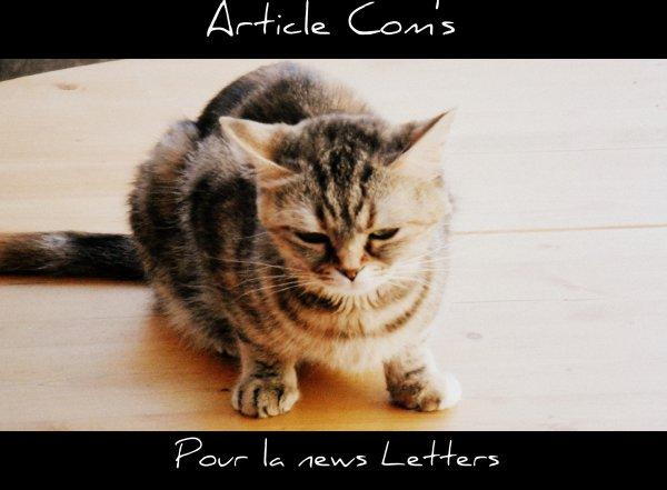 Pour les inscrits a la news letters