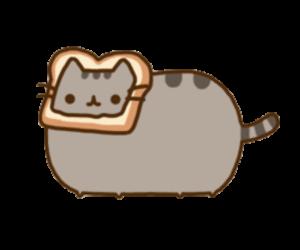 Feline Holiday :3