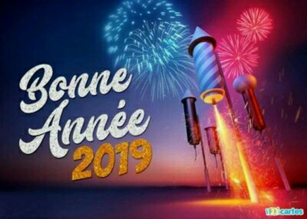 Bonne année 2019 à tous les colombophiles et  votre famille