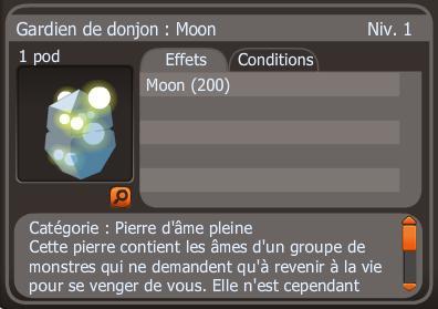 Mon premier Moon