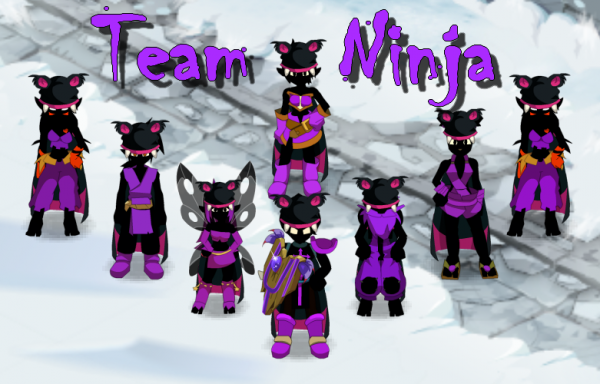 Team Ninja presque prête !