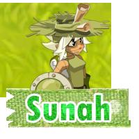 Commande Team-Sunah