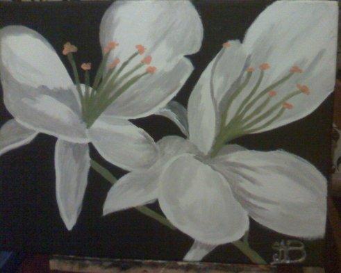 """Fleurs blanches"""