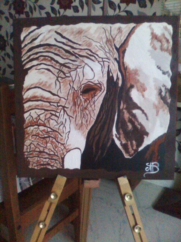 """Portrait elephant"""