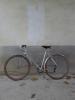 Duravia 650b bike