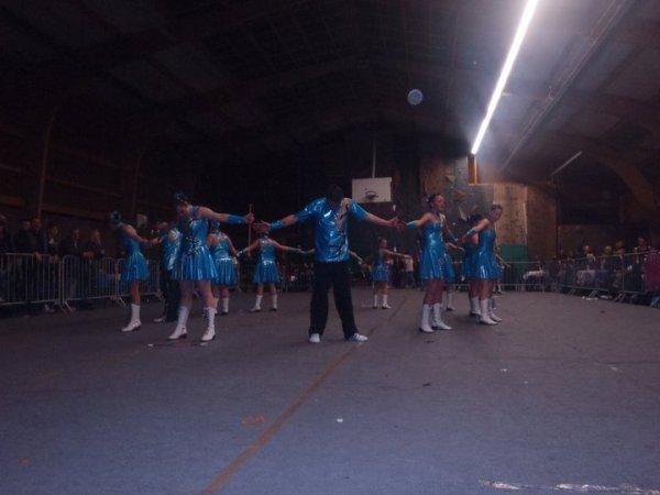 camelias 2011