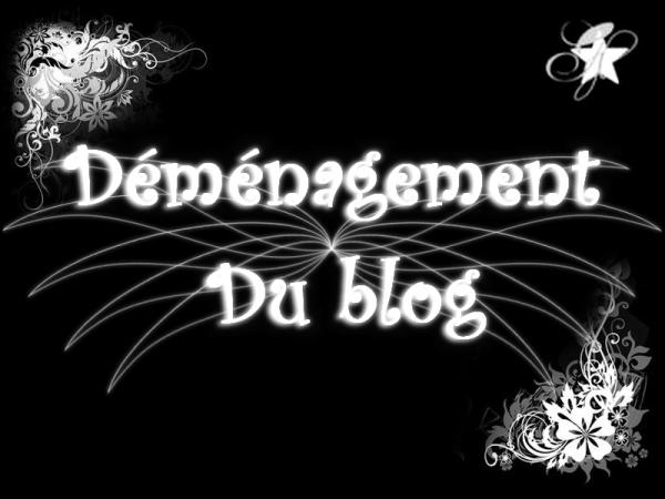 Déménagement du blog