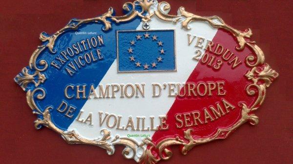 Résultats Verdun 2013