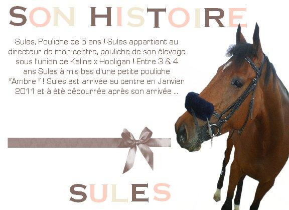 Son Histoire, la Notre.