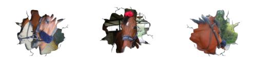 Mon poney Magique !