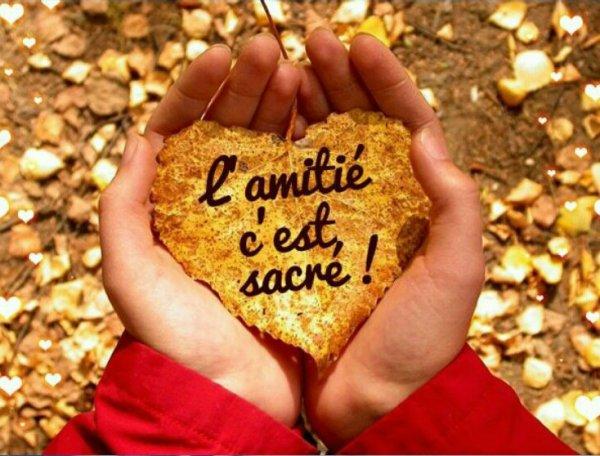 Cadeau Personnelle De L Amitie Et Du Grand Respect !!! Décerné A Ma Chére Amie FABIENNE !!! Qui Se Reconnaitra !!! Gros Bisous Du Coeur De L Amitié Sincére !!! Ton Ami Didier !!! NE PAS PRENDRE MERCI !!!