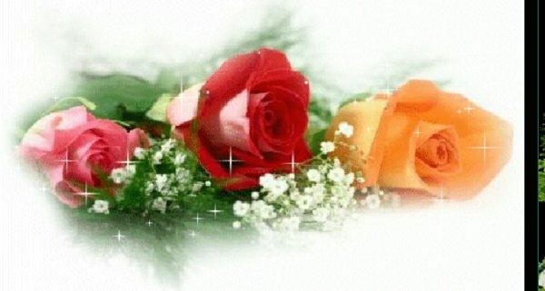 ♤ Cadeau  Personnelle ♤ De L Amitié Respectueuse ♤ Decerné A Ma Chére ♤ Amie ♤ LILIMARSUPILANI ♤  Qui Se Reconnaitra ♤ Gros Bisous Amicaux ♤ Et Respectueux ♤ De L Amitie ♤ Ton Ami DIDIER ♤ NE PAS PRENDRE ♤ MERCIIIII INFINIMENT ♤