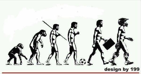 L evolution