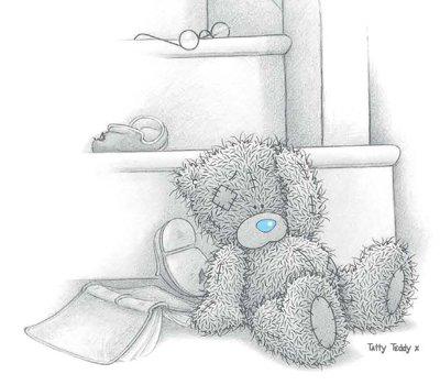 Teddy 645