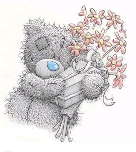 Teddy 647