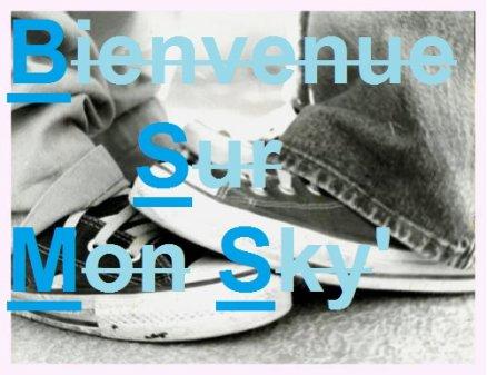 Bienvenue Sur Mon Sky !!!!!!