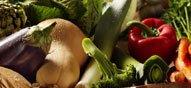 La souffrance des légumes, l'argument débile qu'on entend tout le temps !