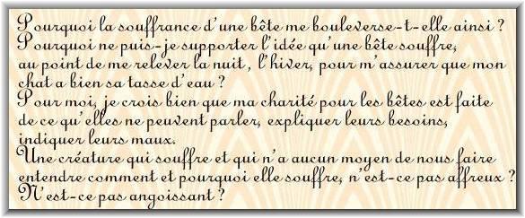 Le texte d'un végétarien Belge à Paris