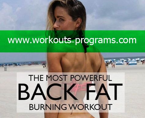 the best workout program