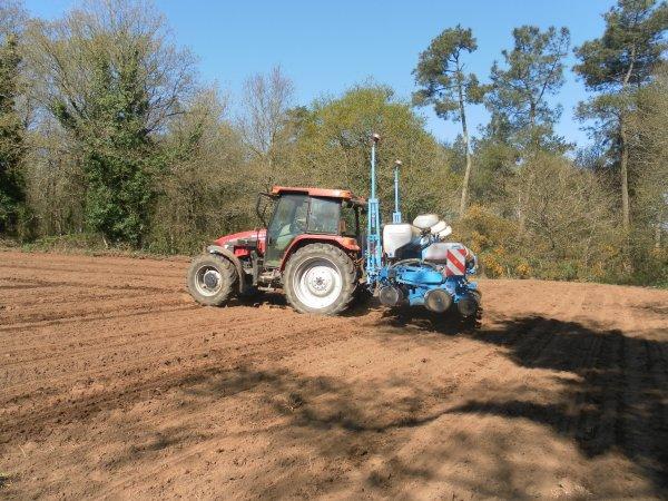 semis de maïs 2013 chantier n°1