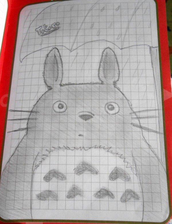 Totoro ^^