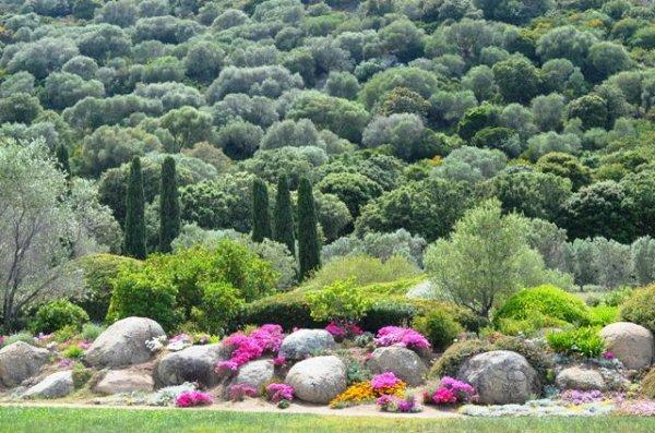 les jardins de saleccia