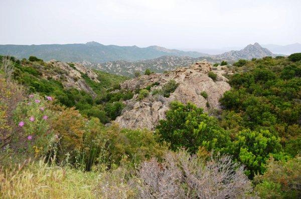 DESERT DES AGRIATTES