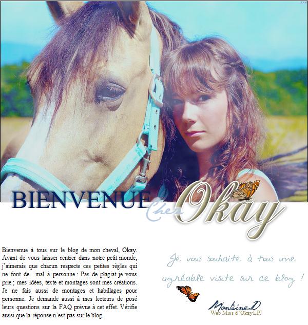 Bienvenue sur le blog d'Okay et Montaine.D