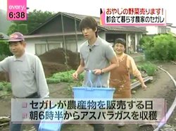 [News every] juin 2010