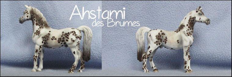 Ashtami