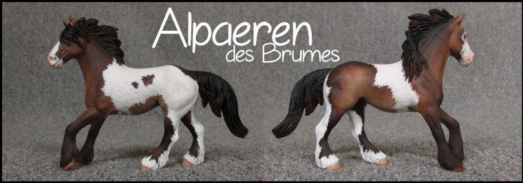 Alpaeren