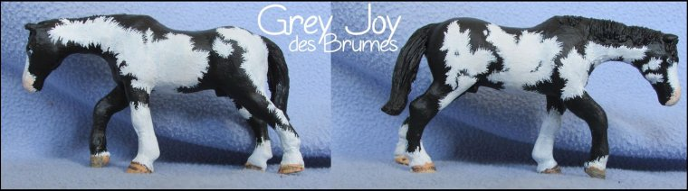 Grey Joy