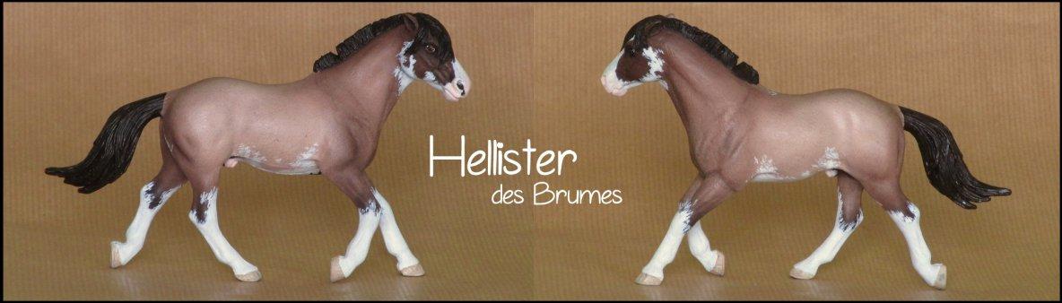 Hellister