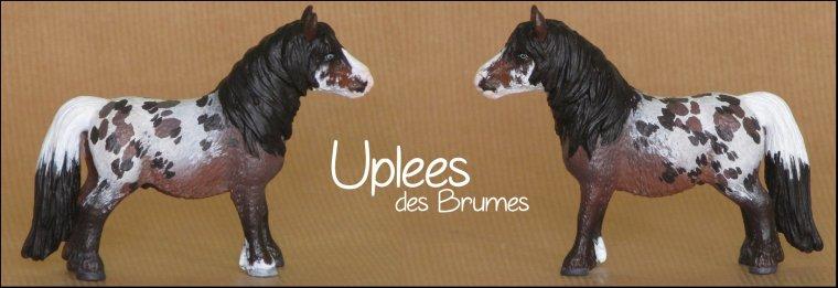 Uplees
