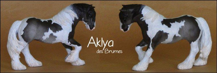 Aklya