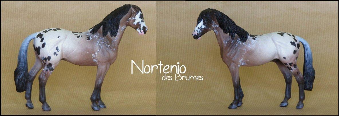 Nortenio