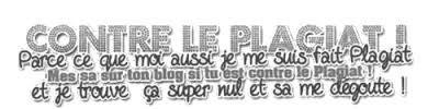 ~ Les règles du blog. ♥