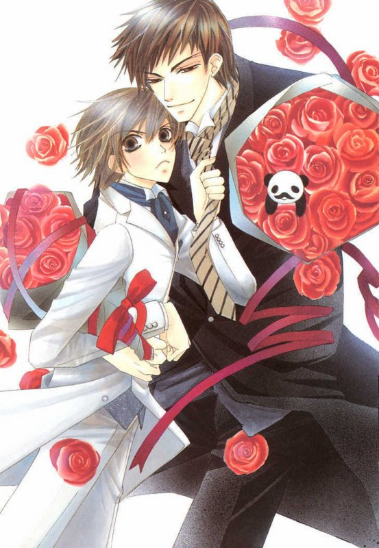 Junjou Romantica: Couple