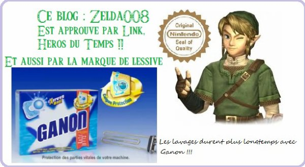 Zelda008 : Un blog à voir !