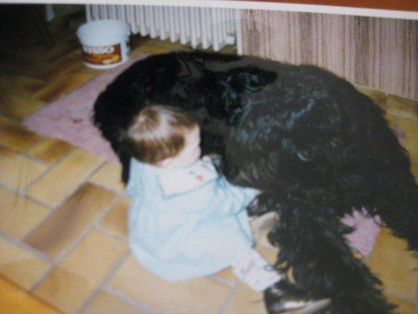 Mon gros chien <3