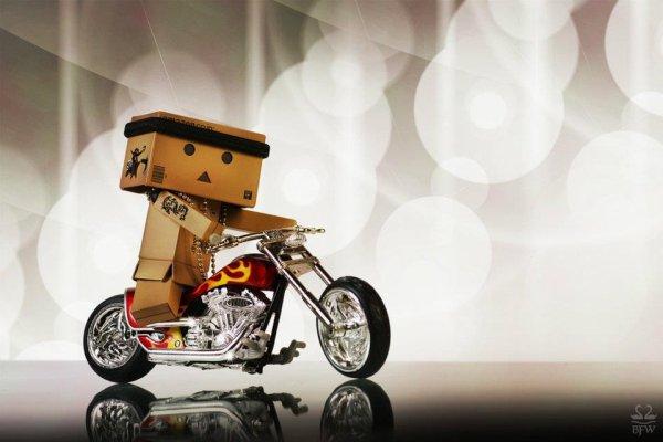 Danbo sur sa moto
