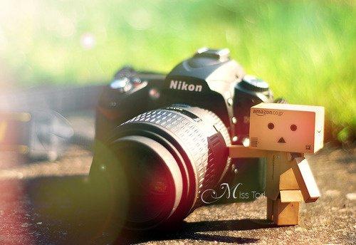 Danbo photographe