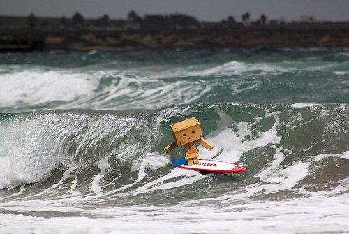 Danbo surf