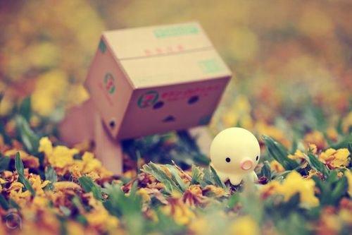 Danbo joue dans l'herbe