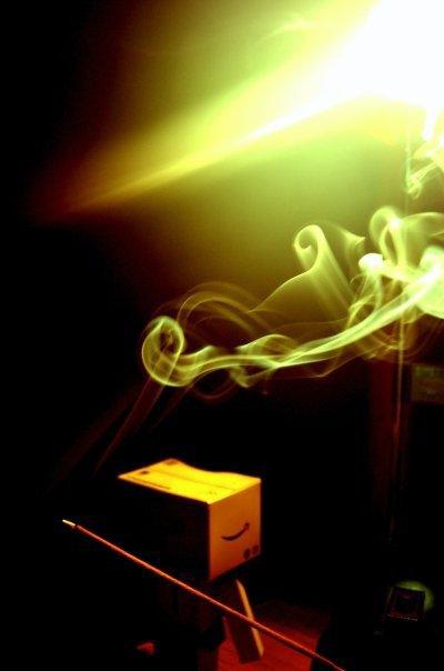 Danbo fume