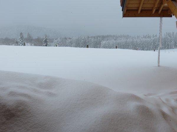 Paysage en allant au Neige et Glace