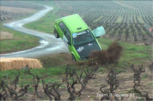 Liste des 46 abandons du Rallye Régional des Vignes de Régnié